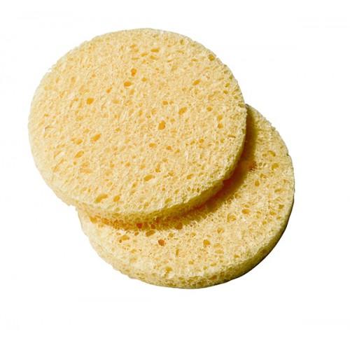 Eponge cellulose x 25 120199