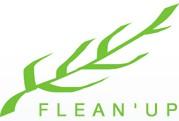 logo Flean'up
