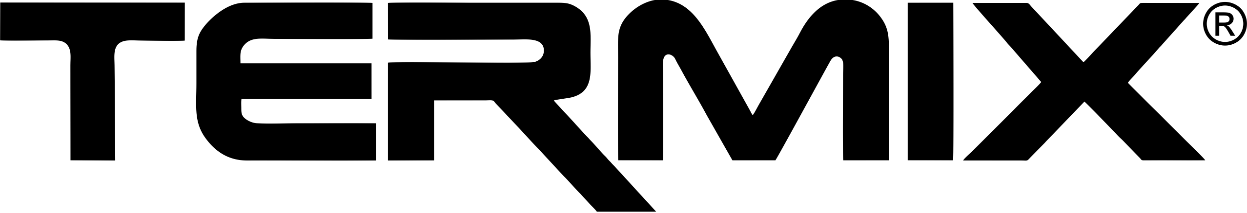 logo Termix
